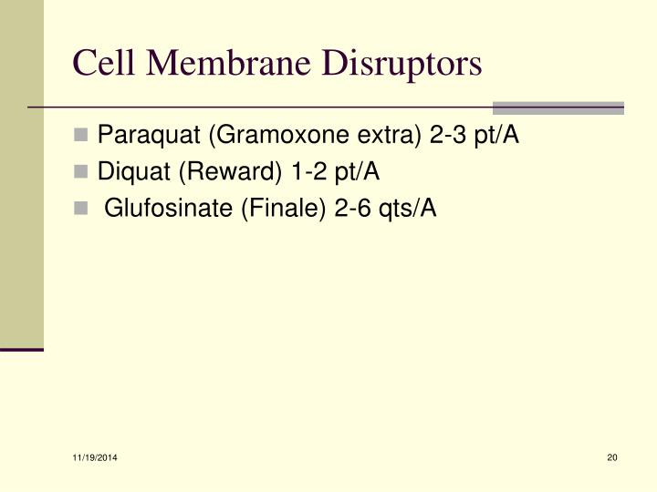Cell Membrane Disruptors