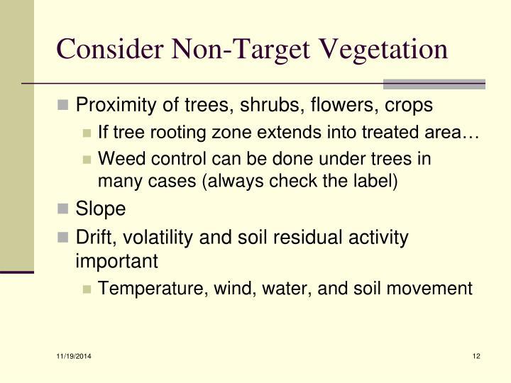 Consider Non-Target Vegetation