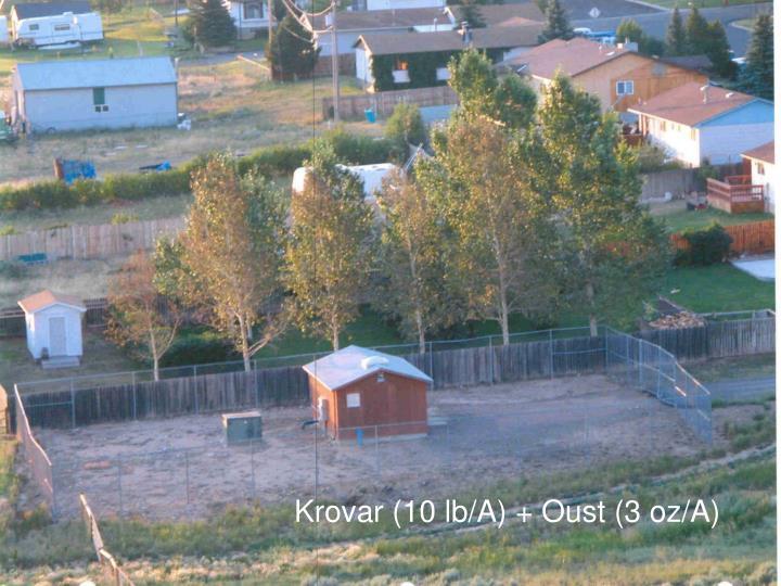 Krovar (10 lb/A) + Oust (3 oz/A)