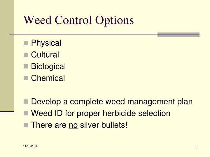 Weed Control Options