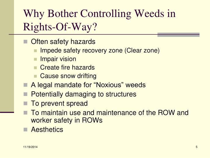 Why Bother Controlling Weeds in Rights-Of-Way?