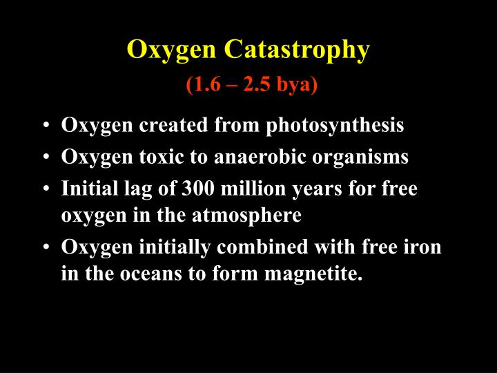 Oxygen Catastrophy