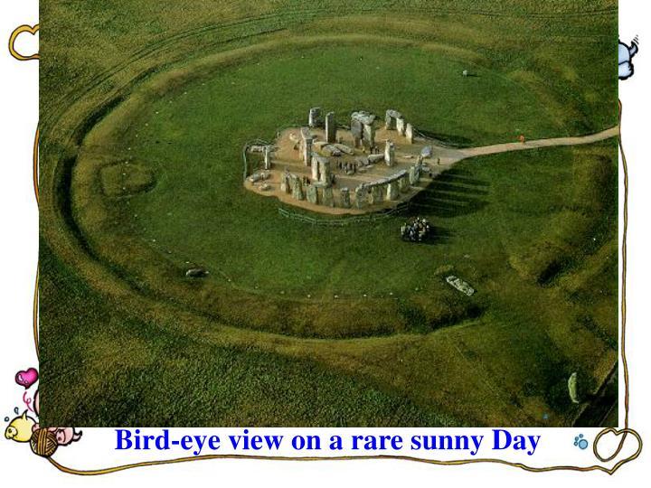 Bird-eye view on a rare sunny Day