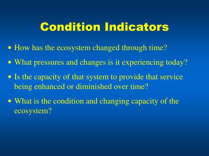 Condition Indicators