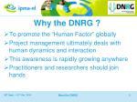 why the dnrg