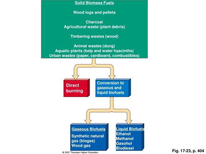 Solid Biomass Fuels