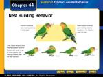 nest building behavior