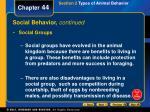 social behavior continued
