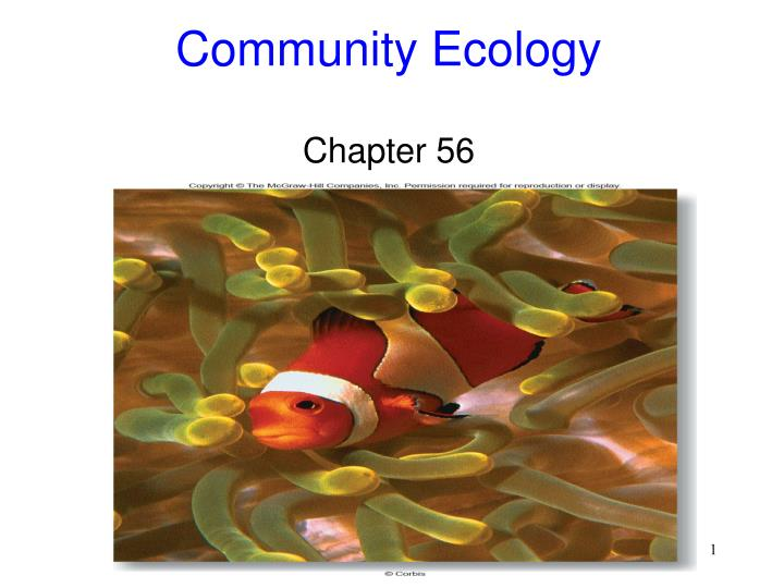 community ecology chapter 56 n.