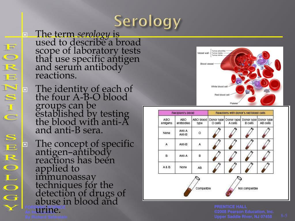 PPT - FORENSIC SEROLOGY PowerPoint Presentation, free