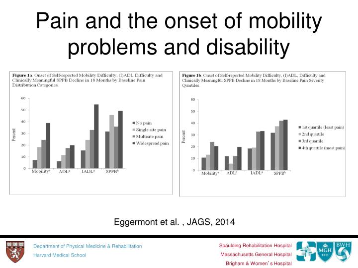 Pain and the onset of mobility problems and disability