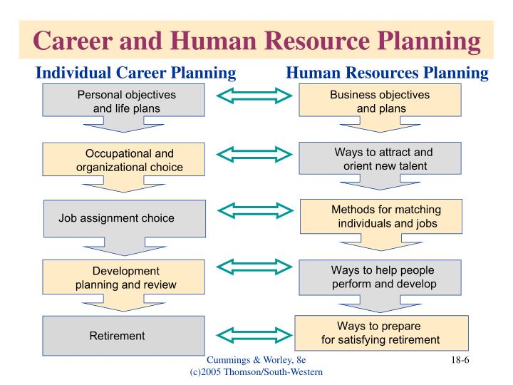 Career and Human Resource Planning