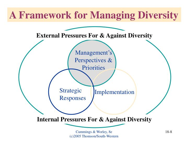 A Framework for Managing Diversity