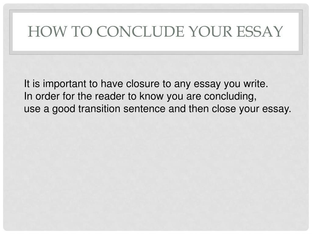 Academic essay editor services usa