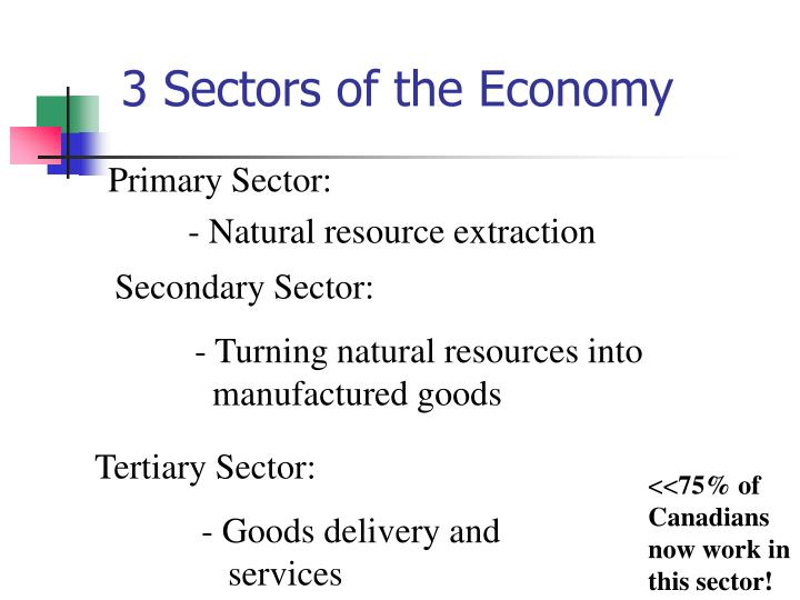 primary sector of economy