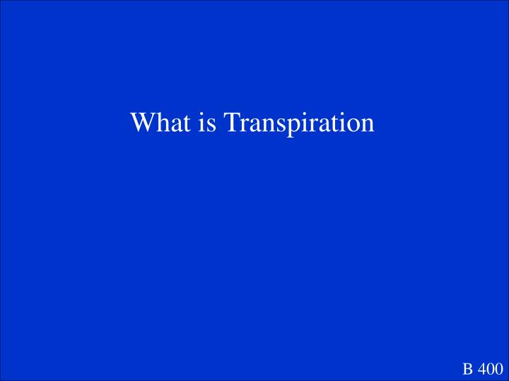 What is Transpiration