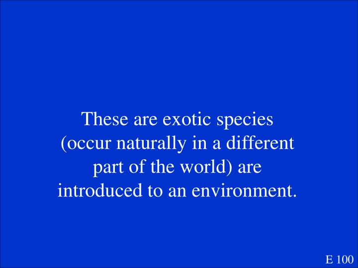 These are exotic species (occur naturally in a different part of the world) are introduced to an environment.