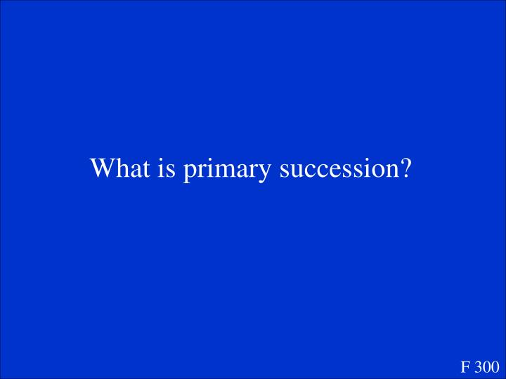 What is primary succession?