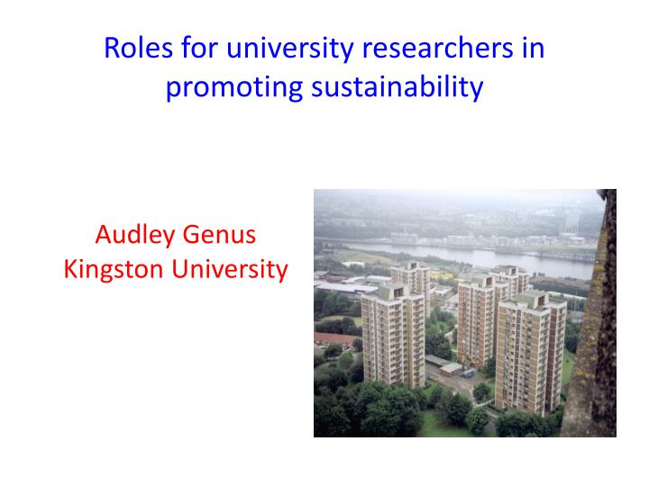 Roles for university researchers in promoting sustainability