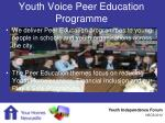 youth voice peer education programme