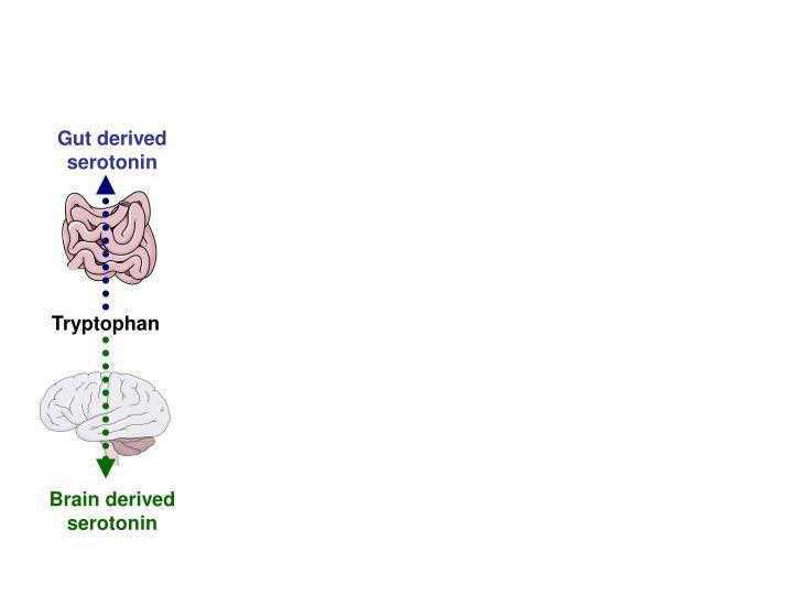 Gut derived serotonin