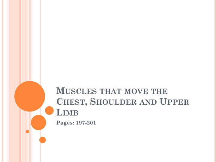 Muscles that move the chest shoulder and upper limb