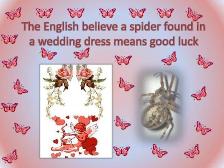The English believe a spider found in a wedding dress means good luck