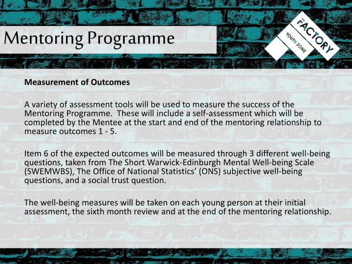 Mentoring Programme