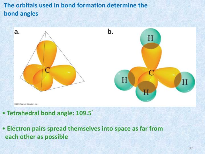 The orbitals used in bond formation determine the