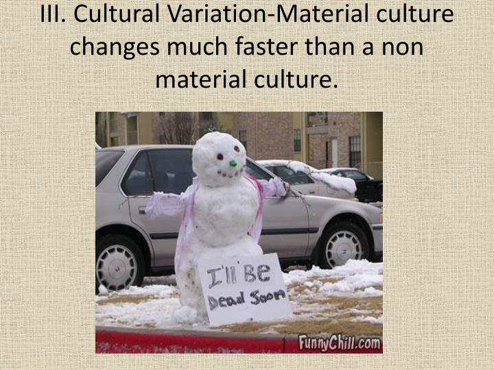 III. Cultural Variation-Material culture changes much faster than a non material culture.