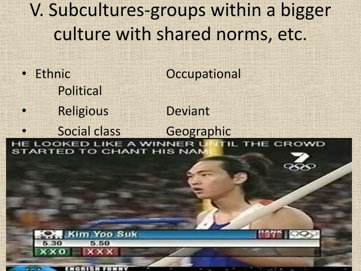 V. Subcultures-groups within a bigger culture with shared norms, etc.