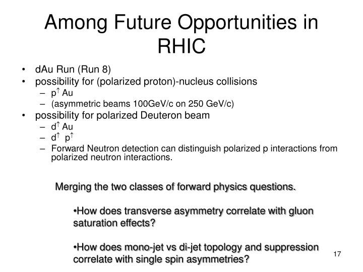 Among Future Opportunities in RHIC