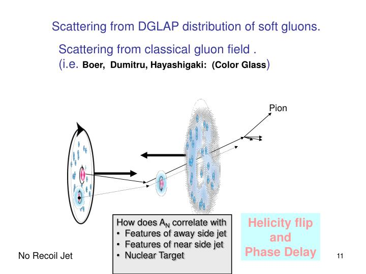 Scattering from DGLAP distribution of soft gluons.