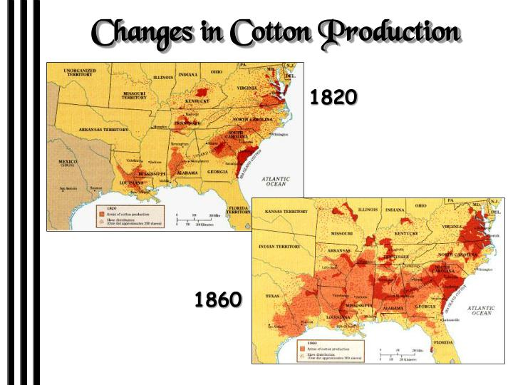Changes in Cotton Production