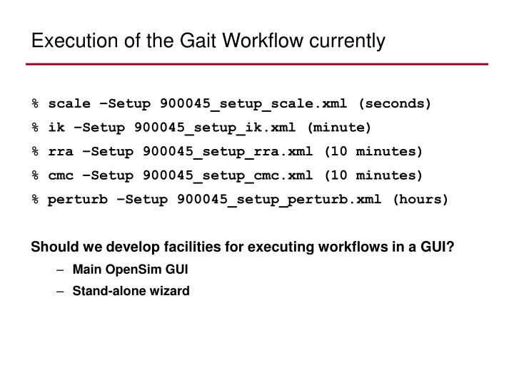 Execution of the Gait Workflow currently