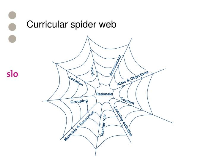 Curricular spider web