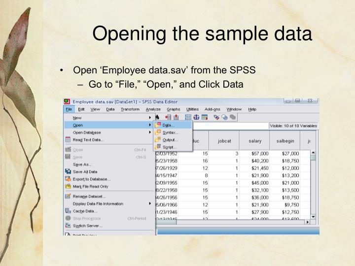 Opening the sample data