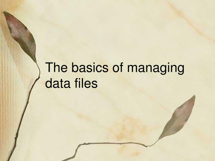 The basics of managing data files