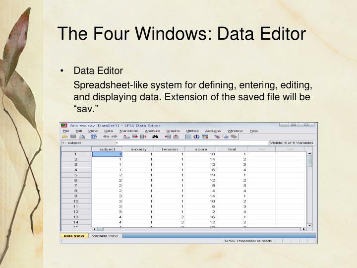 The Four Windows: Data Editor
