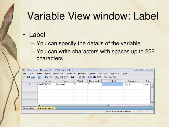 Variable View window: Label