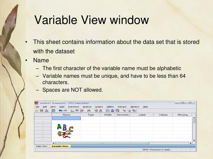 Variable View window