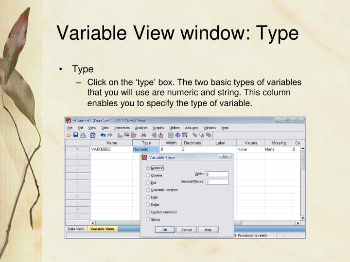 Variable View window: Type