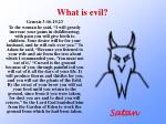 what is evil