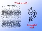 what is evil1
