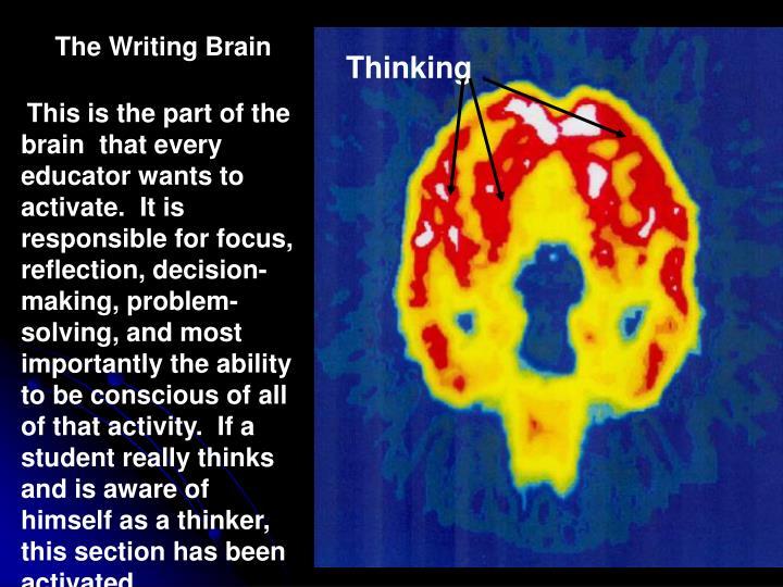 The Writing Brain