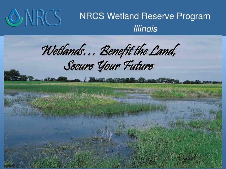 Wetlands benefit the land secure your future