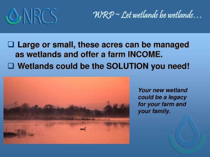 WRP ~ Let wetlands be wetlands…