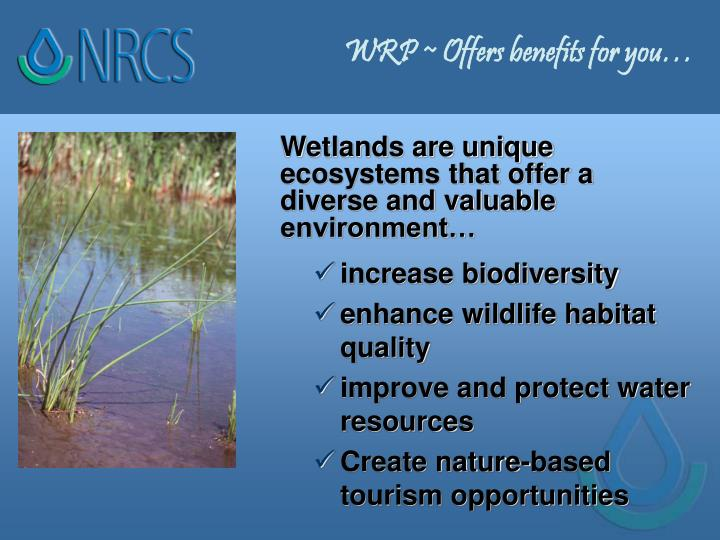 Wrp offers benefits for you