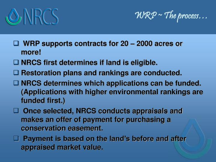 WRP ~ The process…