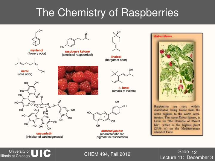The Chemistry of Raspberries